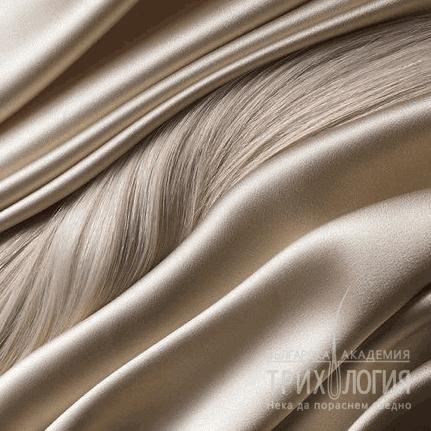 """5.3 Dixidox de Luxe маска за повредена, суха коса и скалп """"steel and silk"""" – """"Стомана и Коприна"""""""
